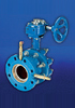 Butterfly Commissioning Valves
