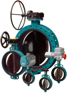 Interapp Desponia Plus Butterfly Valve