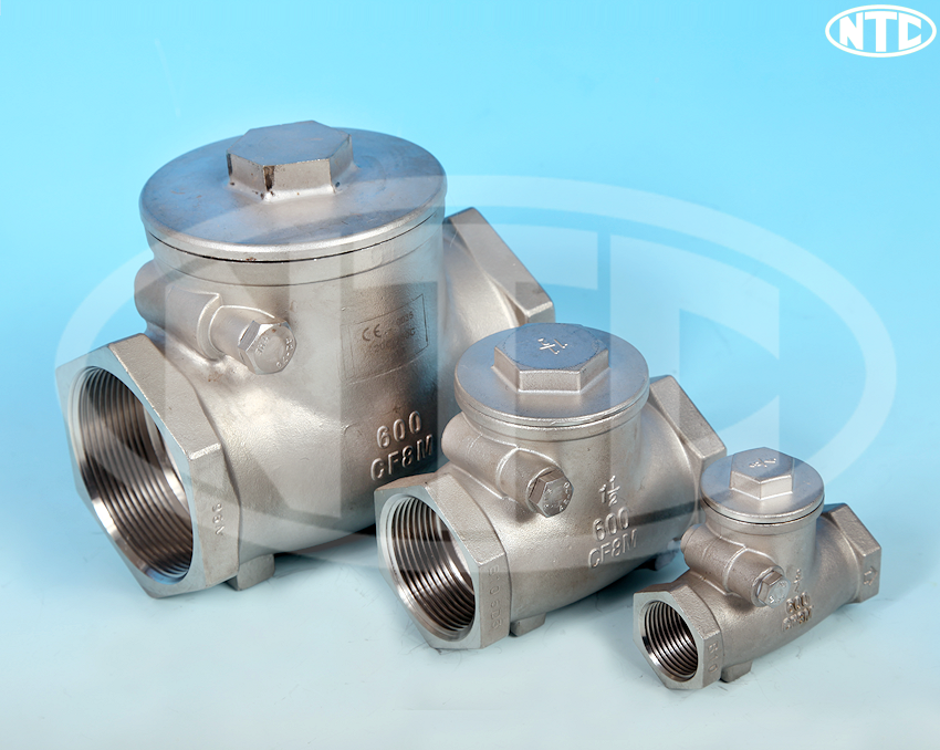 ETG CK1 Threaded Stainless Steel Swing Check Valve